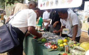 organic farming association on india organised organic mahotsav 2019 in udaipur2