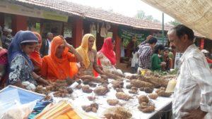 organic farming association on india organised organic mahotsav 2019 in udaipur3